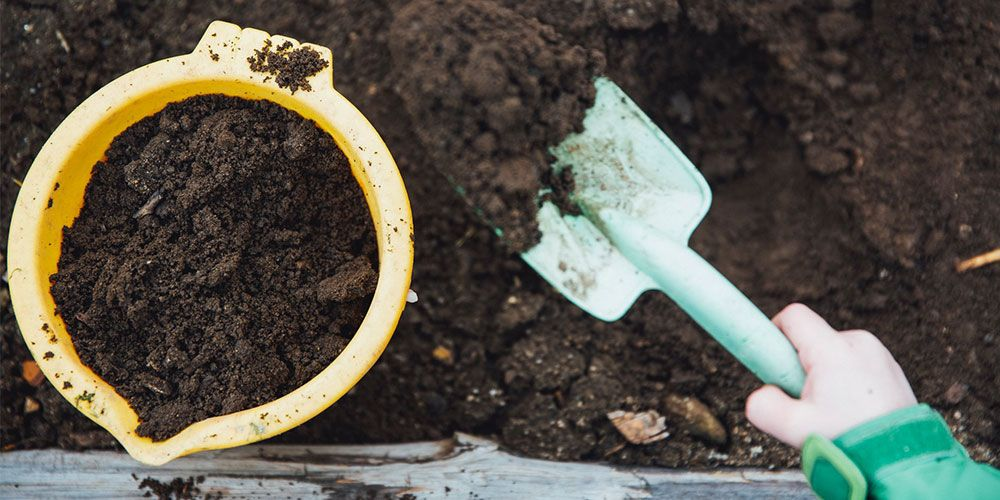 How to Compost Paper and Cardboard Boxes