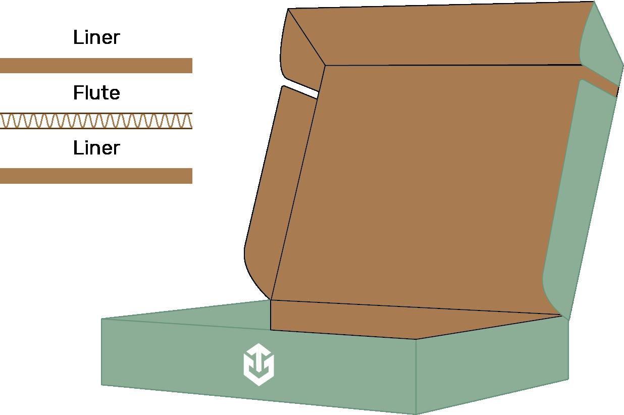 Flexo Printer Mailer Box with Outside Print Mockup